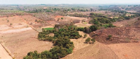 Chuvas não são o bastante para  salvar produção agrícola